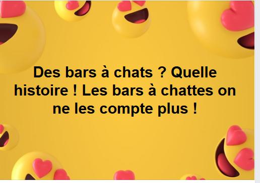 bar1111